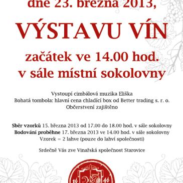 Tradiční výstava vín 2013